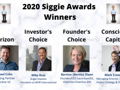 2020 Siggie Awards Winners